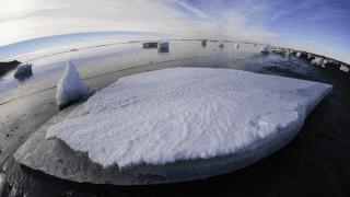 El Covid-19 y el Cambio Climático